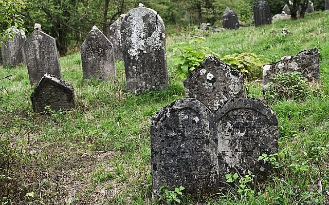 Jewish cemetery in Checiny, Poland (photo credit: Nikodem Nijaki/Wikimedia Commons/File)