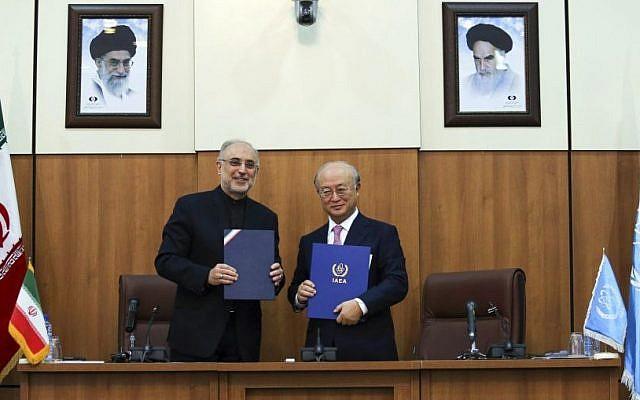 Head of Iran's Atomic Energy Organization Ali Akbar Salehi, left, and International Atomic Energy Agency (IAEA) Director General Yukiya Amano, in Tehran, Iran, Nov. 11, 2013 (photo credit: AP/ ISNA/Mehdi Ghasemi)
