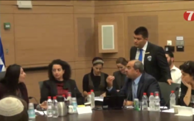 MKs Miri Regev (right) of Likud and Ahmad Tibi (gesticulating) of Ta'al shouting in a Knesset Internal Affairs Committee meeting on Monday. (screen capture: YouTube)