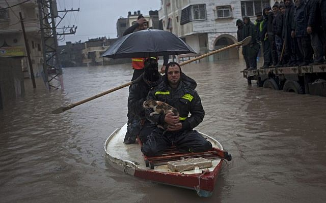 Palestinian rescue members evacuate a cat following heavy rains in Gaza City, on Saturday, December 14, 2013. (photo credit: AP Photo/Khalil Hamra)