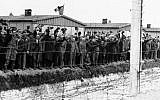 Illustrative: In this undated photo, prisoners at the electric fence of the Dachau concentration camp in Germany cheer on the arriving Americans (photo credit: AP/File)