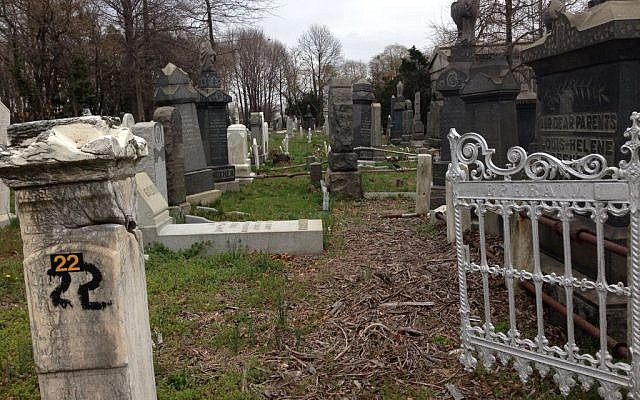 The same section of New York's Bayside Cemetery in Queens after the UJA-Federation-funded cleanup. (photo credit: Courtesy of the Community Association for Jewish At-Risk Cemeteries/JTA)