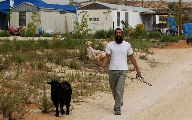 An Israeli settler walks with a goat in the Tzufim outpost near the Palestinian town of Qalqilya in the West Bank on October 31, 2012. (Photo credit: Nati Shohat/Flash90)