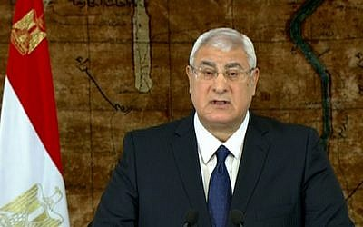 Egypt's interim President Adly Mansour (photo credit: AP/Egyptian State Television/File)
