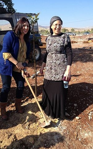 MKs Miri Regev (left, Likud) and Orit Struck (right, Jewish Home) plant a tree in the Jordan Valley settlement of Gitit, Thursday, January 1, 2014 (photo credit: Raphael Ahren/Times of Israel)