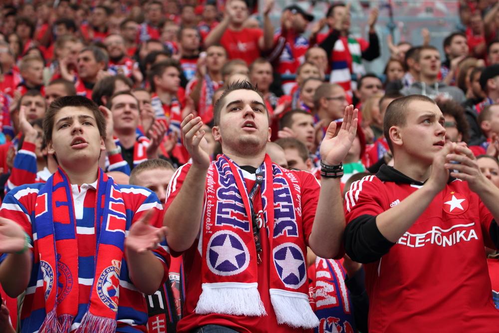 The Soccer Fan