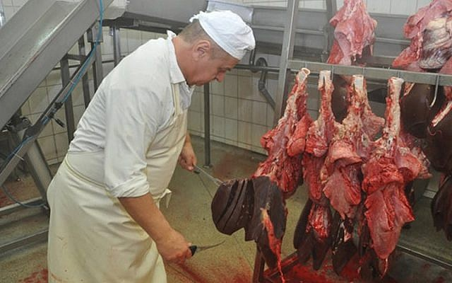 Illustrative: Ritually slaughtered meat being processed at a hallal slaughterhouse near Warsaw in 2011. (photo credit: Courtesy of Zaklady Miesne Mokobody/JTA)