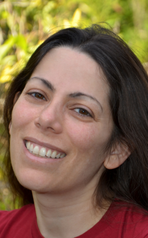 Adi Bittan, CEO of OwnerListens, a Silicon Valley start-up (courtesy)