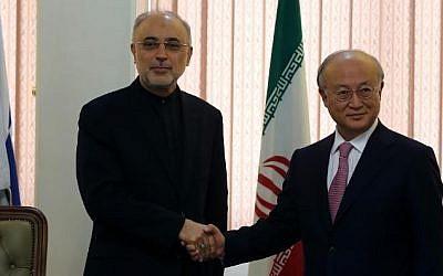 The head of Iran's Atomic Energy Organization Ali Akbar Salehi (L) shakes hands with International Atomic Energy Agency Director General Yukiya Amano, during their meeting in Tehran on November 11, 2013. (AFP/File Atta Kenare)