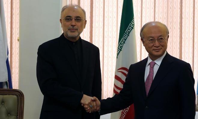 Head of Iran's Atomic Energy Organisation Ali Akbar Salehi (L) shakes hands with International Atomic Energy Agency (IAEA) Director General Yukiya Amano, during their meeting in Tehran on November 11, 2013  (photo credit: AFP/File Atta Kenare)