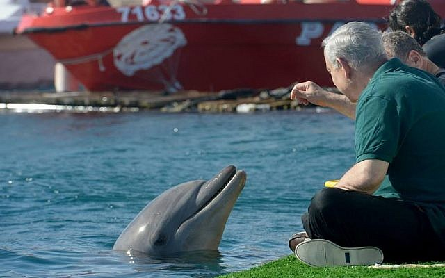 Prime Minister Benjamin Netanyahu cozies up to a dolphin in Eilat during a 'Royal Tour' of Israel. (photo credit: Avi Ohayon/Government Press Office)