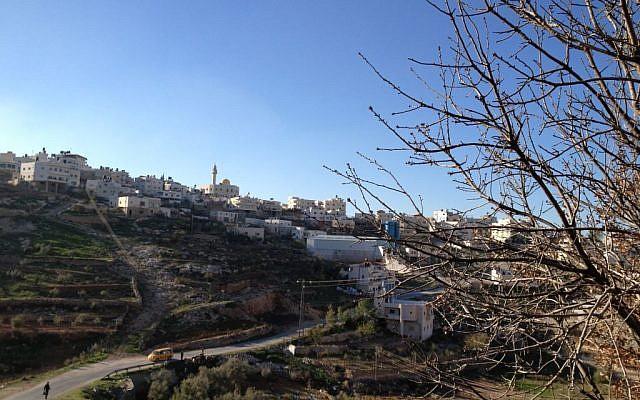 The Palestinian village of Wadi Nis, March 26, 2014 (photo credit: Elhanan Miller/Times of Israel)