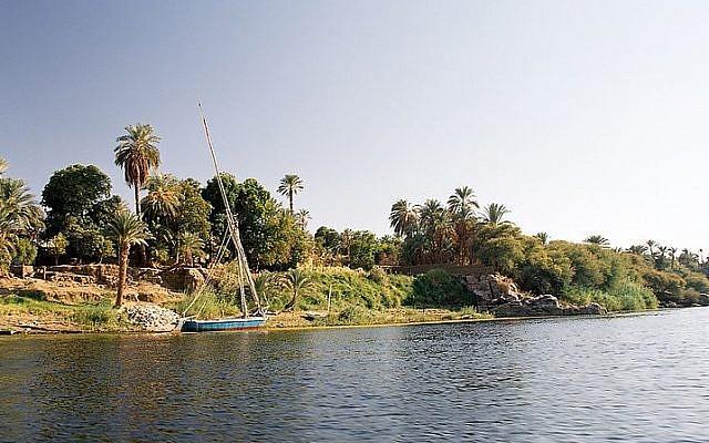 """West bank of Elephantine Island (Wikimedia commons/Przemyslaw """"Blueshade"""" Idzkiewicz CC BY-SA)"""