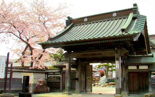 Cherry blossoms behind a traditional Japanese temple in Ishinomaki. (photo credit: Debra Kamin/Times of Israel)