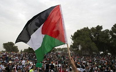 Illustrative photo of a protester holding up a Palestinian flag (AFP/Ahmad Gharabli)