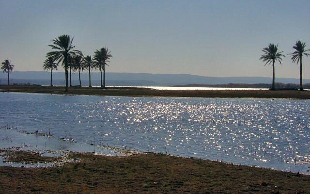 Illustrative photo of the Euphrates River in Iraq photo credit: Jayel Aheram/Wikimedia Commons/File)