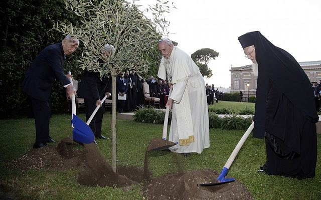 Pope Francis plants an olive tree with Israel's former president Shimon Peres, left, Palestinian President Mahmoud Abbas, second from left, and Ecumenical Patriarch Bartholomew I, right, in a sign of peace during an evening of peace prayers in the Vatican gardens, Sunday, June 8, 2014. (photo credit: AP Photo/Max Rossi, Pool)