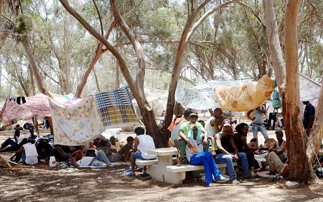 African migrants from the Holot detention center seen in their makeshift tent city in the Nitzana forest, June 29, 2014.  (photo credit: Flash 90)