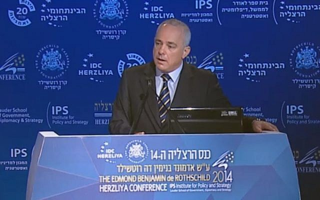Yuval Steinitz speaking in Herzliya Monday, June 9, 2014. (Screen capture: Herzliya Conference)