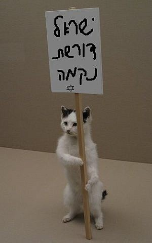 A cat holds aloft a sign reading, 'The People of Israel Demand Vengeance' in this photo posted to Facebook (photo credit: Israeli People Demands Revenge/Facebook)