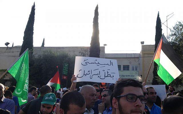 A demonstrator carries a sign reading 'El-Sissi is Israel's hero' in Nazareth, July 21, 2014 (photo credit: Elhanan Miller/Times of Israel)