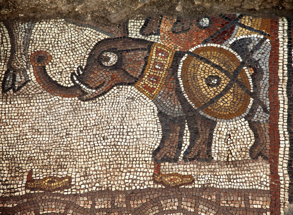 The Huqoq synagogue's 5th century mosaic, with the upper register showing a war elephant. (photo credit: Jim Haberman)