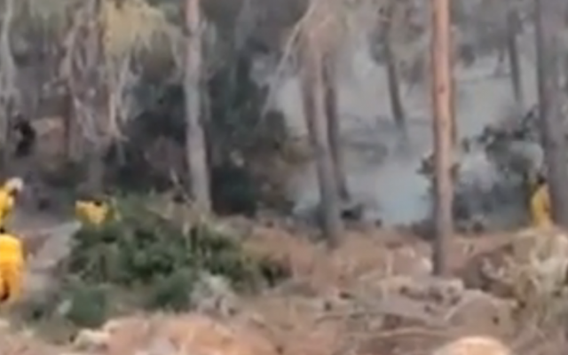 Firefighters battle brush fire in Jerusalem hills (screen capture: Walla)