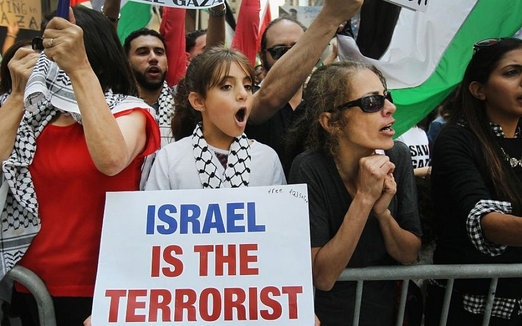 Pro-Palestinian demonstrators protest across the street from a pro-Israel rally in Chicago, Ill., July 28, 2014. (Scott Olson/Getty Images/via JTA)