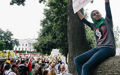Thousands of people rally in Washington, DC, to protest Israel's military campaign in Gaza on August 2, 2014 (photo credit: Lexey Swall/Getty Images/AFP)