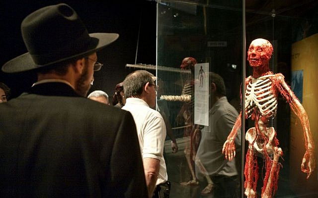An ultra-Orthodox man attends the 'Body Worlds' exhibit in Haifa, August 17, 2009. (photo credit: Matanya Tausig/Flash90)