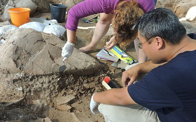 Nurith Goshen, area supervisor of Area D-West, and Dr. Andrew Koh, associate director of the Tel Kabri Archaeological Project, articulating a vessel in the Tel Kabri wine cellar. (photo credit: CC BY-SA Flinders Petrie, Wikimedia Commons)