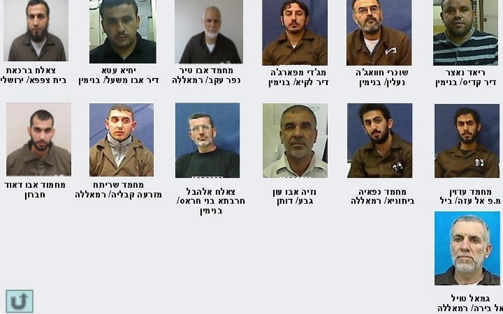 Suspected key terrorists arrested by the Shin Bet during a sweep of Hamas operatives in May and June, 2014. Details of a Hamas plot to topple the PA and target Israel were revealed on August 18 (photo credit: Shin Bet)