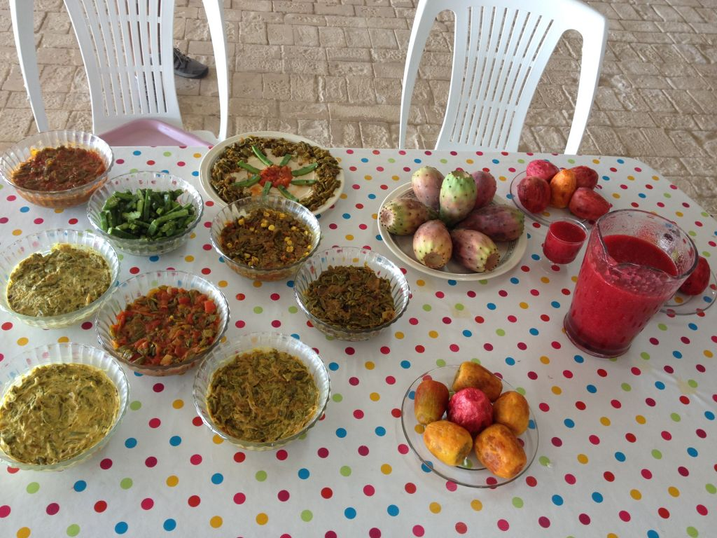 A meal of sabres-based dishes. The Blums highly recommend their sabres smoothies, made by blending the fruit in a blender or food processor, straining the seeds, and serving cold (photo credit: Jessica Steinberg/Times of Israel)