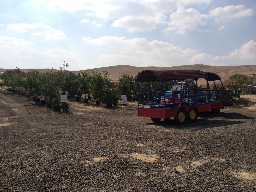 Trains, goats and prickly plants at the Orly Cactus Farm in the Negev (photo credit: Jessica Steinberg/Times of Israel)