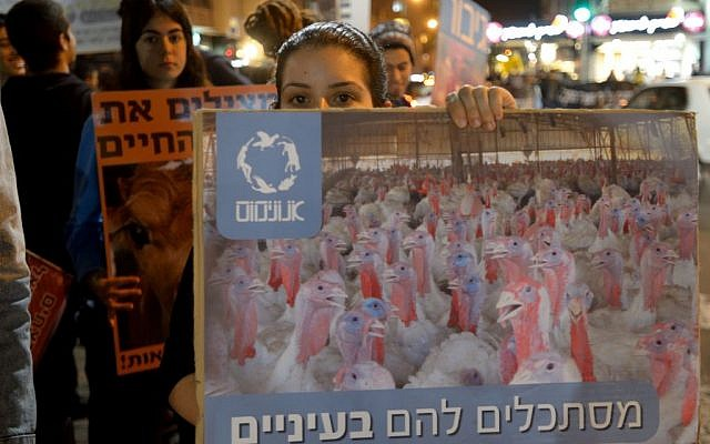 Israeli animal rights activists protest against animal cruelty in Tel Aviv in this illustrative photo. (photo credit: Gili Yaari /Flash90