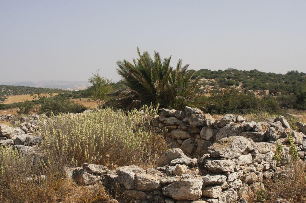 The ruins of Hurvat Patom (Photo credit: Shmuel Bar-Am)