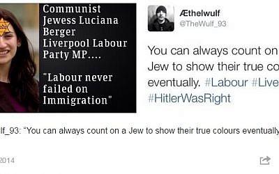 An anti-Semitic tweet at British MP Luciana Berger (photo credit: screenshot via Tumblr/Everydayantisemitism)