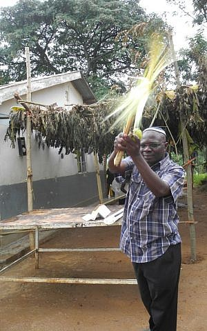 Rabbi Gershom shakes the lulav in front of the community sukkah  at the Nabugoya Hill Synagogue in Uganda. (Melanie Lidman/Times of Israel)