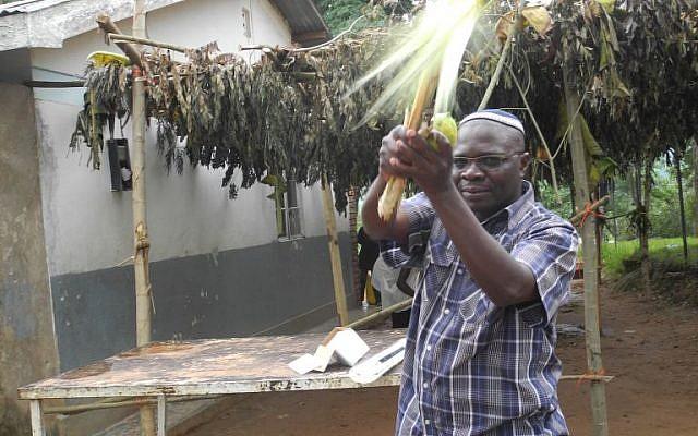 Rabbi Gershom Simozu shakes the lulav in front of the community sukkah  at the Nabugoya Hill Synagogue in Uganda. (Melanie Lidman/Times of Israel)