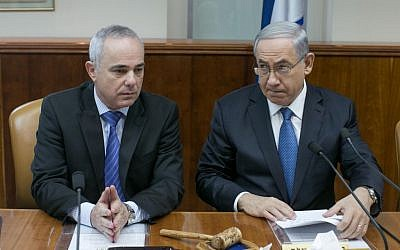 Prime Minister Benjamin Netanyahu (R) and Intelligence Minister Yuval Steinitz (L), at the weekly cabinet meeting on Sunday, November 23, 2014. (photo credit: Ohad Zwigenberg/POOL/FLASH90 )