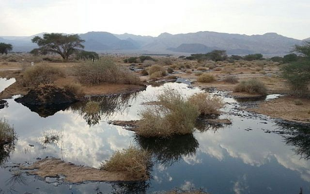 A view of the oil leak in the Arava area of southern Israel, on December 9, 2014 (Environmental Protection Ministry)