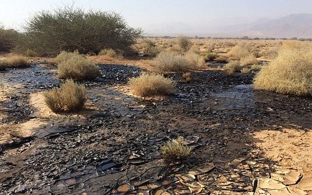 View of the oil spill in the Arava area of southern Israel, on December 10, 2014 (photo credit: Shahar Ischarov/Israeli Environmental Protection Ministry)
