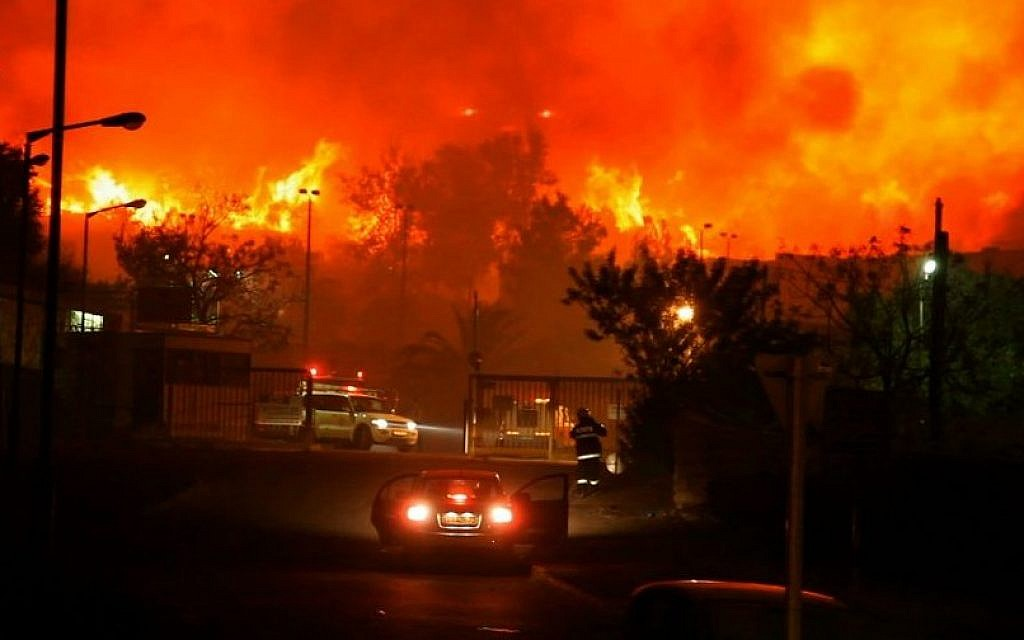 The Carmel Fire raged across northern Israel during Hanukkah 2010, claiming 44 lives. Nineteen Palestinian firefighters joined the effort to stop the fire. (photo: Courtesy/Firelines)