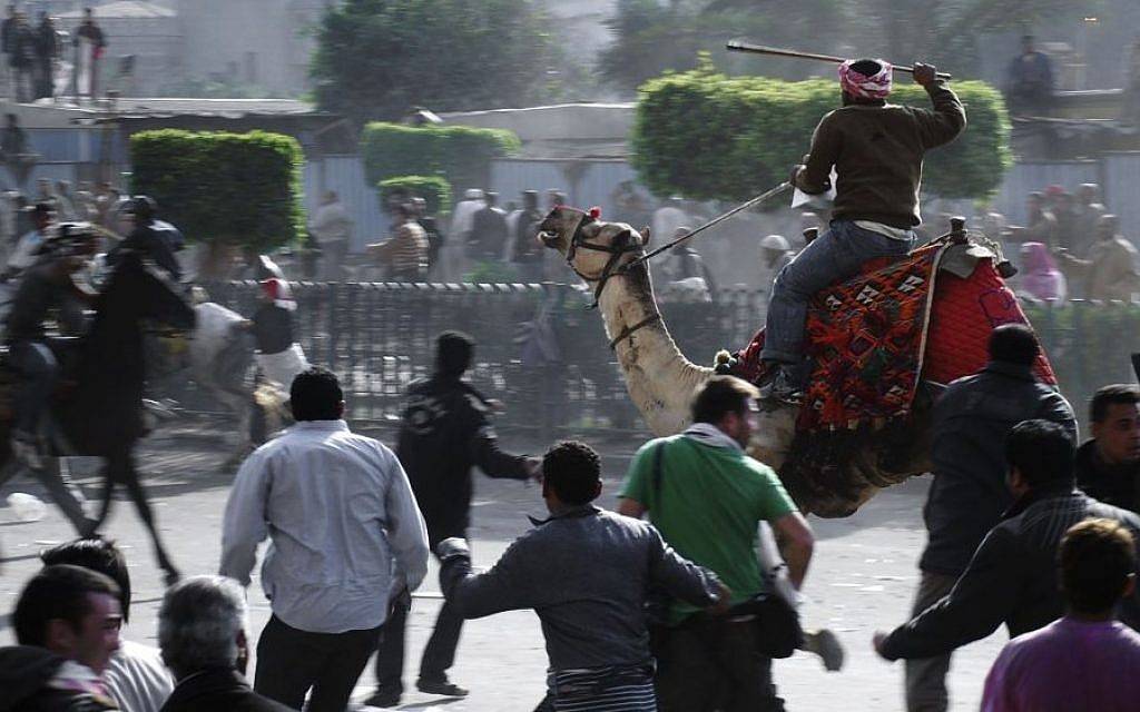 In this February 2, 2011 file photo, supporters of Egyptian President Hosni Mubarak, riding camels and horses, fight with anti-Mubarak protesters in Cairo, Egypt. ( AP/Mohammed Abu Zaid, File)