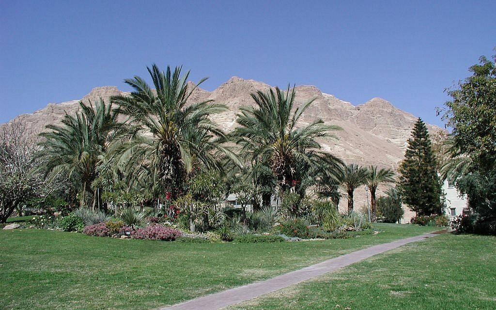 The Kibbutz Ein Gedi Botanical Gardens (photo credit: Shmuel Bar-Am)