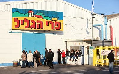 Workers of the Pri Hagalil factory standing outside the plant on January 1, 2015. (Photo credit: Flash90)
