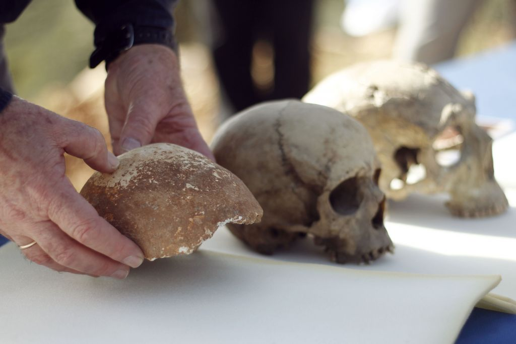A skull fragment found in the Manot Cave (left) alongside modern human (center) and Neanderthal skulls (photo credit: Judah Ari Gross/Times of Israel staff)