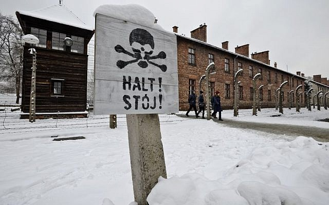 Visitors at the Auschwitz Nazi death camp in Oswiecim, Poland, January 26, 2015 (AP/Alik Keplicz)