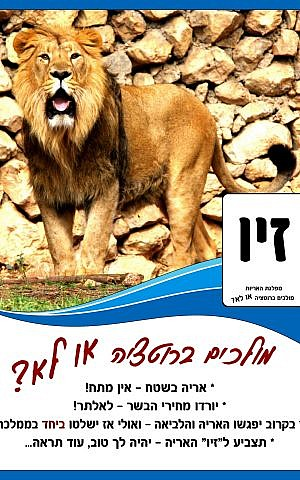 A 'campaign'  poster for the lion in the Jerusalem Biblical Zoo' s ' Most Popular Animal'  elections, held on March 17, 2015. (photo credit: Jerusalem Biblical Zoo)