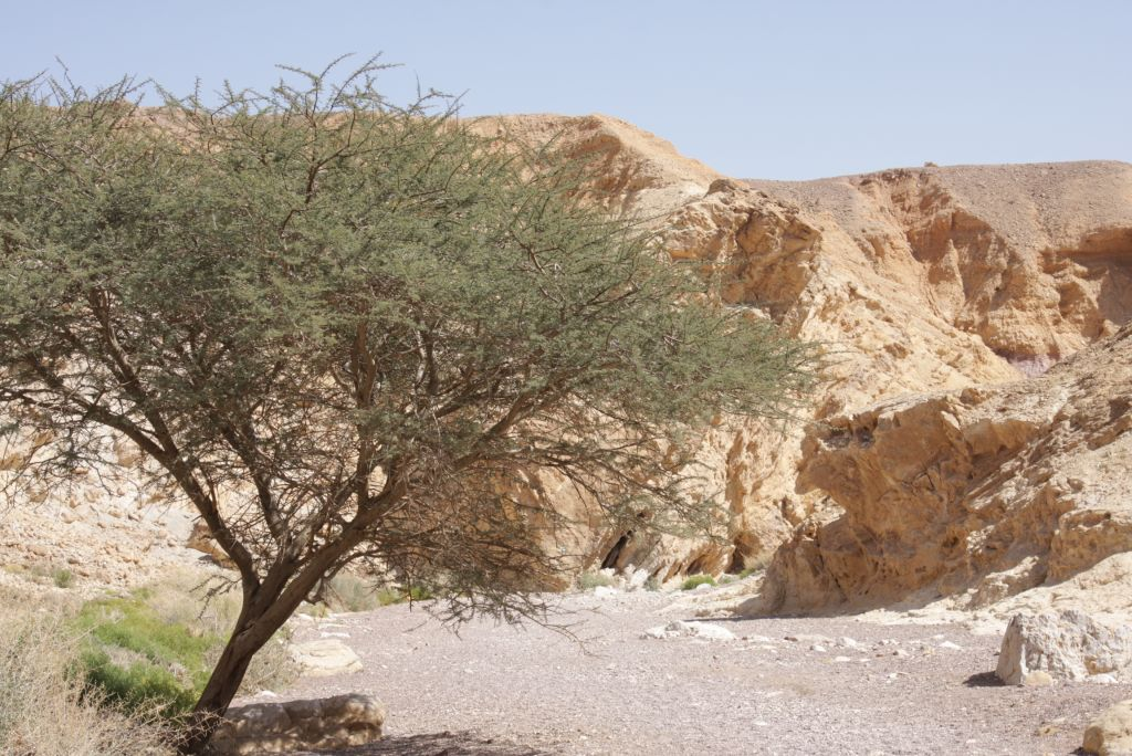 The entrance to Eilat's Red Canyon (photo credit: Shmuel Bar-Am)
